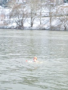 More Winter Dips